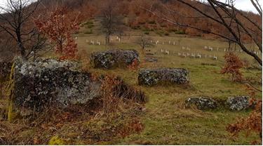 Nekropola-stećaka-Kik-‒-Pridvorci.png - EKSKLUZIVNO | Džemaludin Latić: Bosanski ikavski jezik u Skopaljskoj dolini